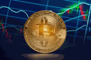 cea mai bună platformă de tranzacționare de marjă bitcoin)