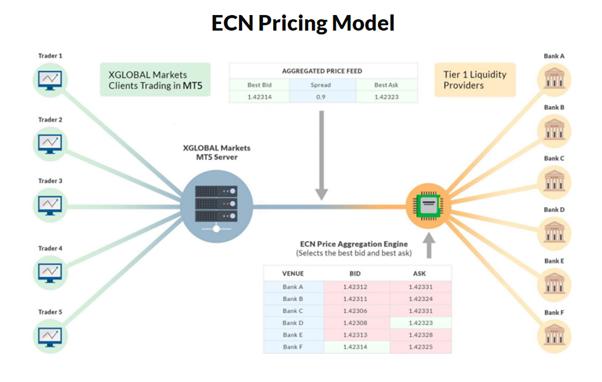 ECN forex trading platform model