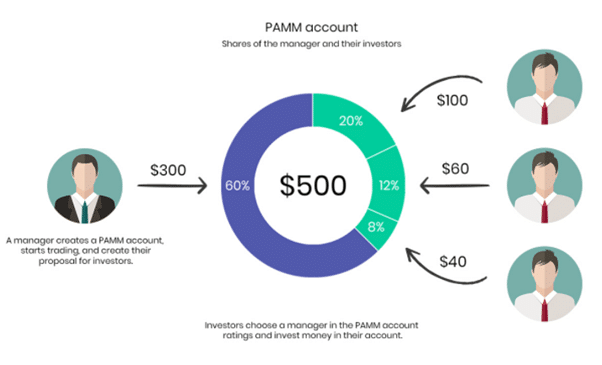 PAMM forex managed account structure
