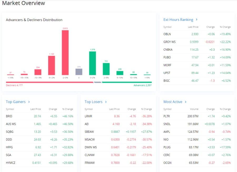 Webull Market Overview