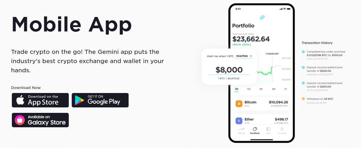 gemini app